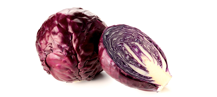 Red Cabbage
