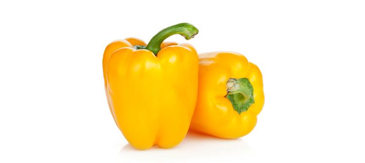 Yellow pepper CAPSICUM